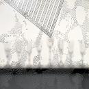 Deail folie op glas