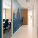 Glass partition wall with colored film at rabobank Amersfoort
