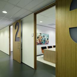 Custom design HPL doors