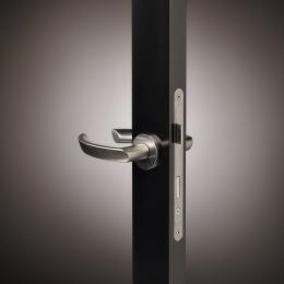 Door handle model 1119 hw