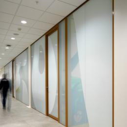 Partition wall covered with a printed film