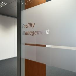 Single glass partition wall with sandblasted film