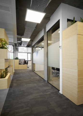 Seamless glass partitions wall that divides the conference room from the larger office