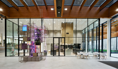 A total overview of the high partition walls at the entrance