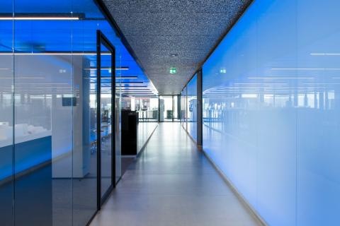 Seamless glass partition at Flow Amsterdam